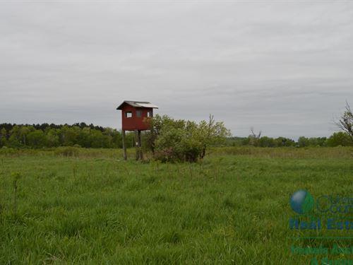 97 +/- Acres Columbia Cy Multi Par : Dalton : Columbia County : Wisconsin