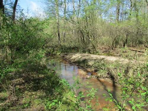 80+/- Beautiful Acres Near Auburn : Lafayette : Chambers County : Alabama