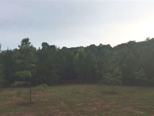 8.5 Ac Gin Branch Mini-Farm : Waverly : Lee County : Alabama
