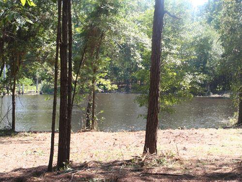 Springhill Farm - A - 3 : Sylvester : Worth County : Georgia