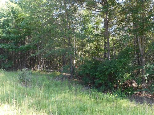 Lot For Sale : Knoxville : Crawford County : Georgia