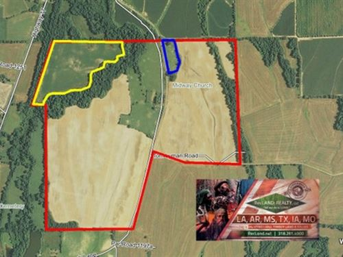 297 Ac - Irrigated Farm Land - Owne : Delhi : Richland Parish : Louisiana