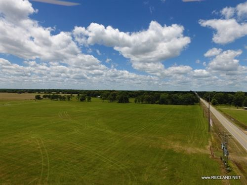 5 Ac - Improved Pasture With Great : Jigger : Franklin Parish : Louisiana