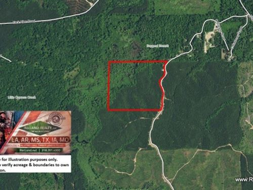 47.5 Ac - Hunting & Timber Trac : West Monroe : Ouachita Parish : Louisiana