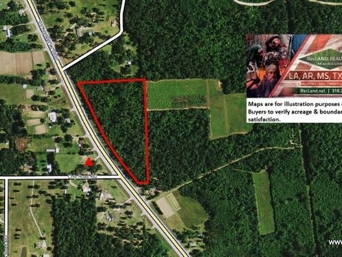 10.7 Ac - Timberland For Home Site : Kirbyville : Jasper County : Texas