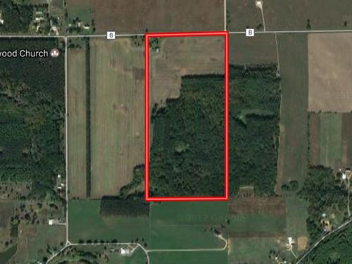 Buildable 80 Acres In Marquette Cty : Dalton : Marquette County : Wisconsin