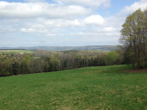93 Acre Hunting Camp : Edmeston : Otsego County : New York