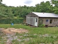 Bullock Community Cabin Pond & 30Ac : Brantley : Crenshaw County : Alabama