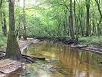 Sandy Creek Tract : Ponce De Leon : Walton County : Florida