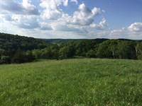 Spring Green Hideaway 62.07 Acres : Spring Green : Sauk County : Wisconsin