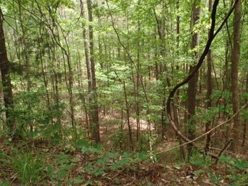 650 Acres In Lauderdale County : Meridian : Lauderdale County : Mississippi