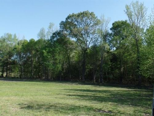99 Acres In Lauderdale County : Collinsville : Lauderdale County : Mississippi