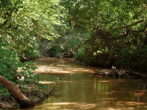 41 Acres In Lauderdale County : Meridian : Lauderdale County : Mississippi