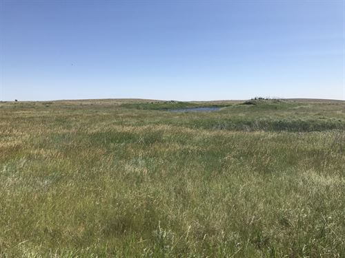 North Central South Dakota Grass La : Eureka : Campbell County : South Dakota