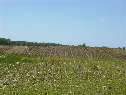Land Auction-50 Acres In 2 Tracts : Roanoke : Whitley County : Indiana