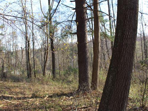 Vanatta Rd - 9 Acres : Logan : Hocking County : Ohio