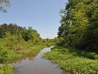Clouds Creek : Lexington : Oglethorpe County : Georgia