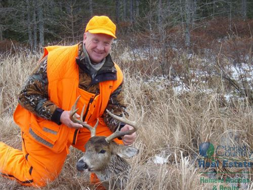 Well Managed Northwoods Hunting : Armstrong Creek : Forest County : Wisconsin