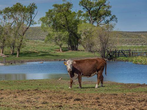 Big Sky Ranch : Craig : Moffat County : Colorado
