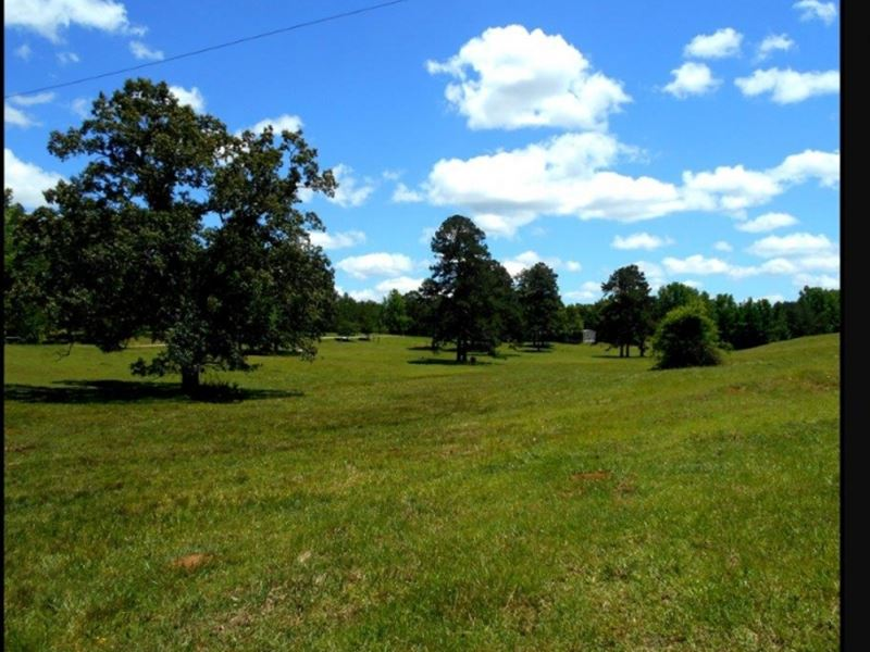 192.93 Acres In Union County In Blu : Blue Springs : Union County : Mississippi