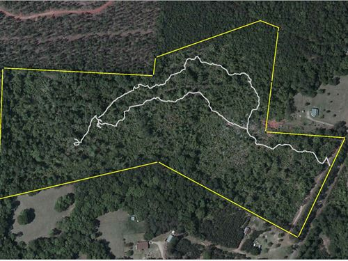 Great Personal Hunting Property : Thomaston : Upson County : Georgia