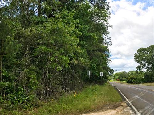 87 Ac Fm 1746 : Woodville : Tyler County : Texas