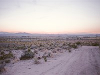 5 Acres In Joshua Tree, California : Joshua Tree : San Bernardino County : California
