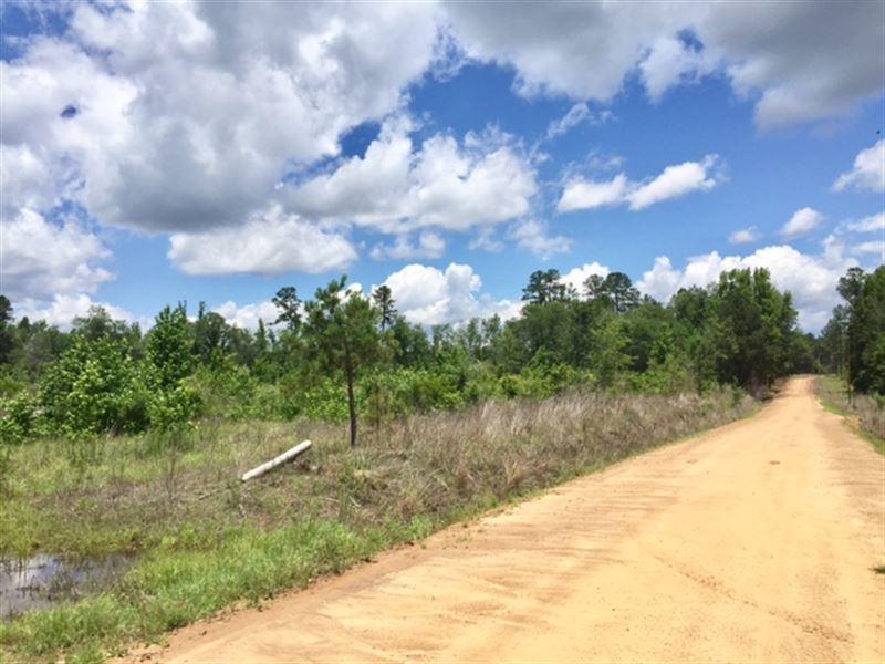 27 Acre Tract : Harrison : Washington County : Georgia