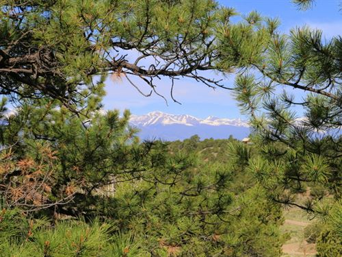 Kings Domain : Westcliffe : Custer County : Colorado