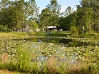 Two Ponds Farm : Greenville : Madison County : Florida