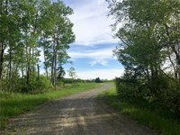 Meadow Road Acreage : Hampden : Penobscot County : Maine
