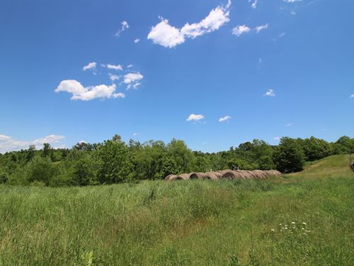 Sam Gilliland Rd - 42 Acres : Oak Hill : Jackson County : Ohio