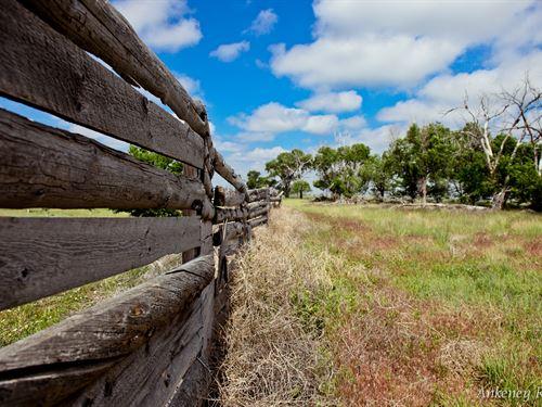 Ankeney Ranch : Briggsdale : Weld County : Colorado