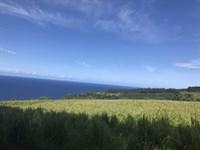 Auhpua'a Ready To Change Hands : Papaaloa : Hawaii County : Hawaii