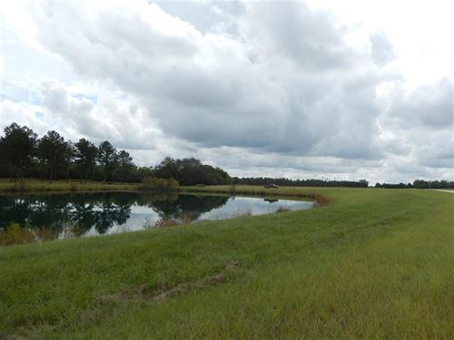 5 Beautiful Acres In Gated Subdvn : Perry : Houston County : Georgia