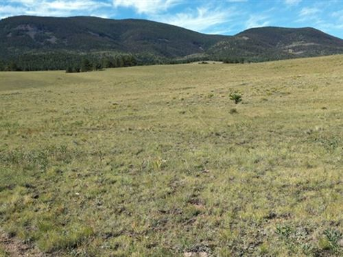 Open Space With Mountain Views : Canon City : Fremont County : Colorado