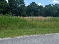 Residential Land : Huntingdon : Carroll County : Tennessee