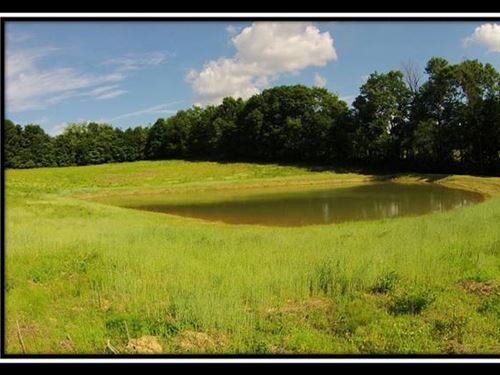 18 Acres Forest, Pond & Pasture : Lancaster : Fairfield County : Ohio