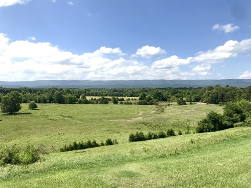 Cattle Farm And 2200 Sq Ft Home : Briggsville : Yell County : Arkansas