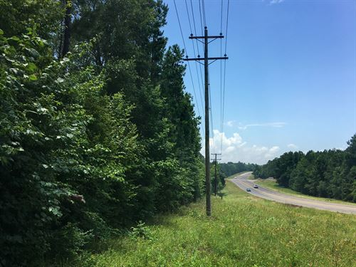 56 Acres Us 190 And Jordy Rd : Point Blank : San Jacinto County : Texas