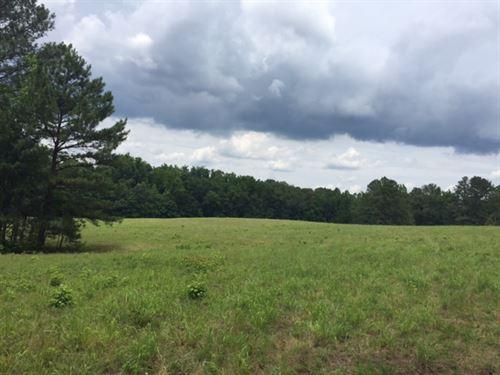 Gorgeous Pasture & Mature Timber : Madison : Morgan County : Georgia