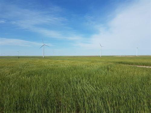 Herrmann Dryland & Wind Turbine : Peetz : Logan County : Colorado