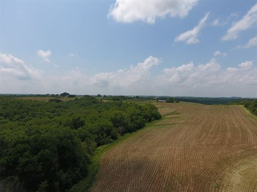 Hunting Land W/Nice Building Site : Boscobel : Crawford County : Wisconsin