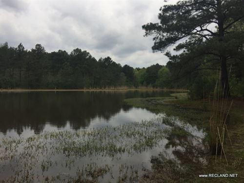 84 Ac - Mature Timber With Homesite : El Dorado : Union County : Arkansas