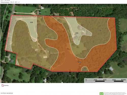 35 Acres W/Home In Panola County 8 : Pope : Panola County : Mississippi