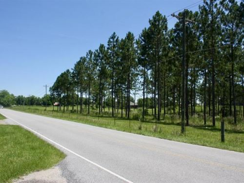 Land For Home, Mini Farm, Purvis, : Purvis : Lamar County : Mississippi