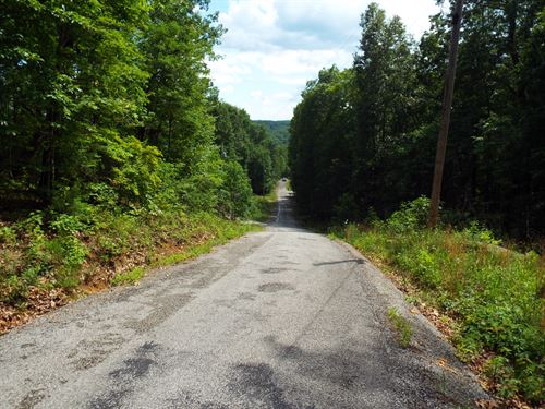 Roane County Tn Wooded Tracts : Kingston : Roane County : Tennessee