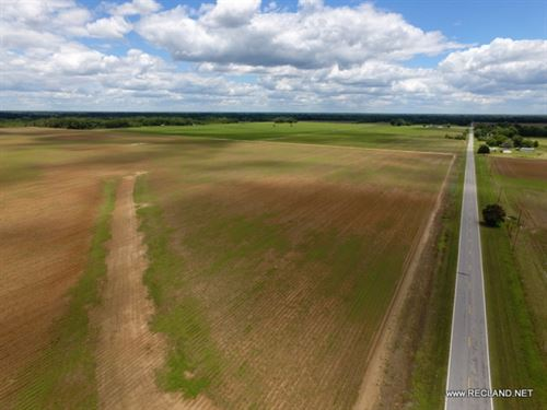 228 Ac, Irrigated Farm Land, Redu : Mangham : Richland Parish : Louisiana
