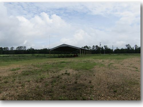 48 Acres In Lincoln County : Brookhaven : Lincoln County : Mississippi