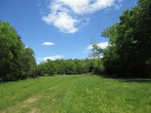 145 Acres In Adair County, Ky : Columbia : Adair County : Kentucky